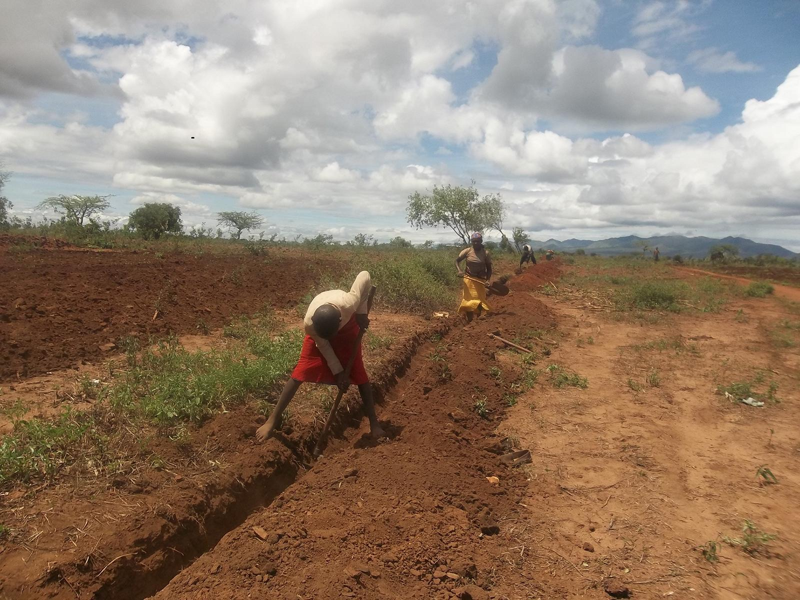 Katangini Trenching in progress